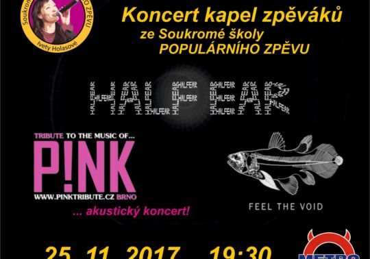 PINK TRIBUTE, HALF EAR, FEEL THE VOID